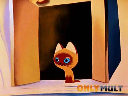 Второй скриншот Котёнок по имени Гав