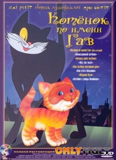 Poster Котёнок по имени Гав