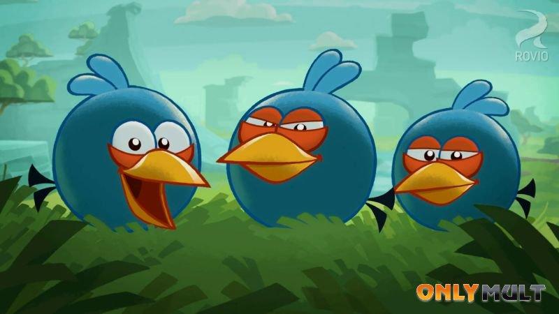 Третий скриншот Angry Birds
