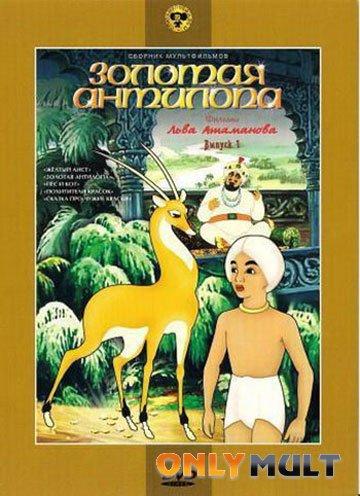 Poster Золотая антилопа