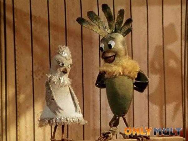 Второй скриншот Боцман и попугай