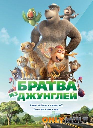 Poster Братва из джунглей