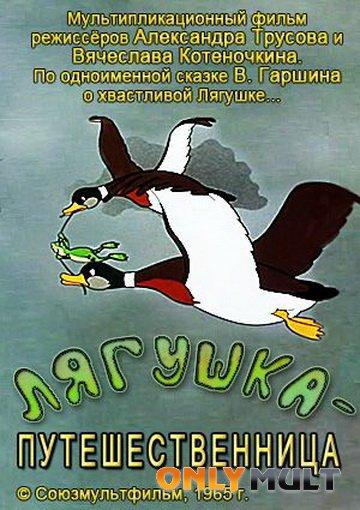 Poster Лягушка путешественница
