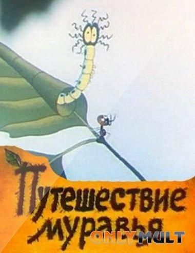 Poster Путешествие муравья