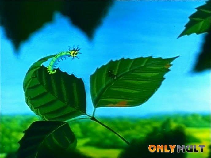Второй скриншот Путешествие муравья