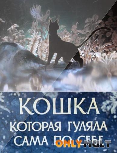 Poster Кошка, гулявшая сама по себе
