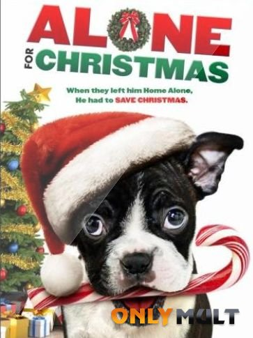 Poster Одни на Рождество