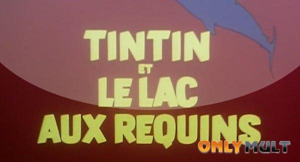 Третий скриншот Тинтин