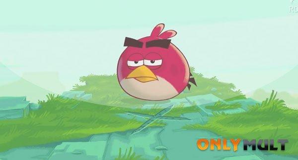 Второй скриншот Злые птицы