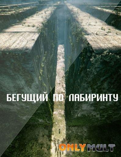 Poster Бегущий в лабиринте