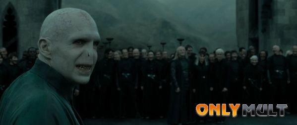 Третий скриншот Гарри Поттер и Дары Смерти 2