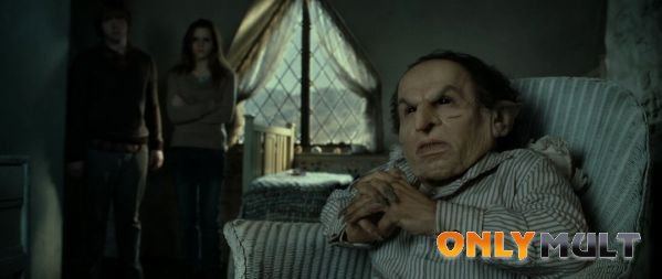 Первый скриншот Гарри Поттер и Дары Смерти 2