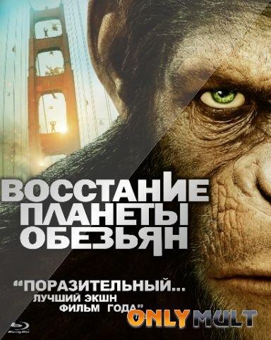 Poster Восстание планеты обезьян