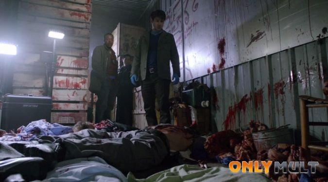 Первый скриншот Гримм (2 сезон)