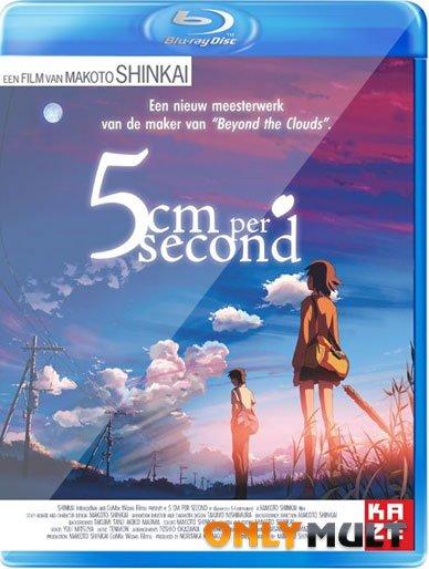 Poster 5 сантиметров в секунду