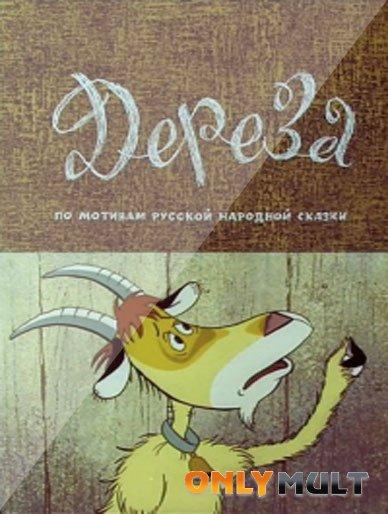 Poster Дереза