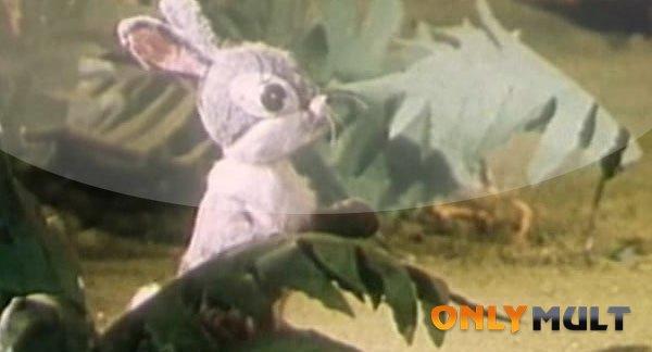 Третий скриншот Петя петушок