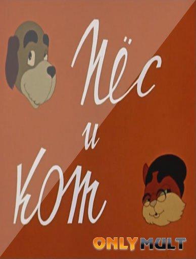 Poster Пес и кот