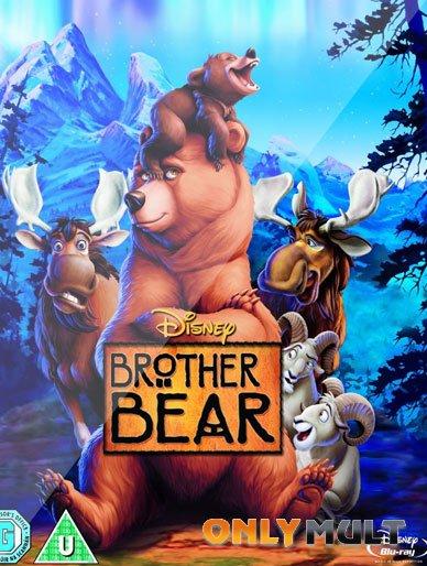 Poster Братец Медвежонок