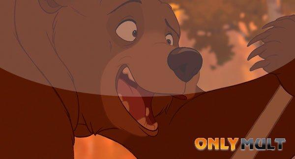 Третий скриншот Братец Медвежонок