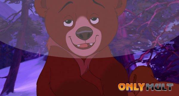 Первый скриншот Братец медвежонок 2