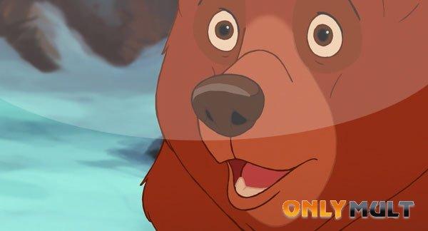 Второй скриншот Братец медвежонок 2