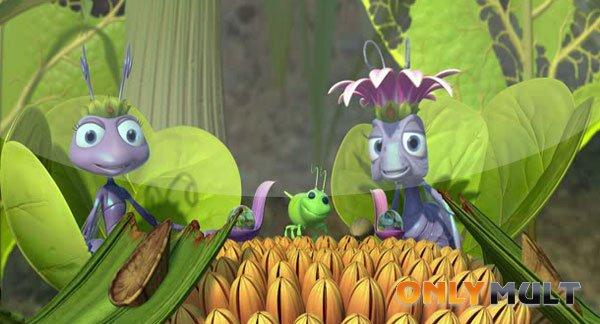 Третий скриншот Жизнь жуков