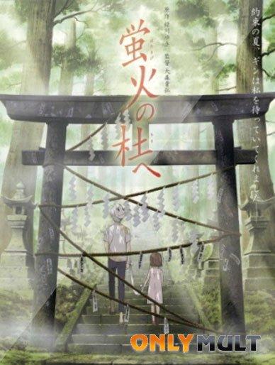 Poster В лесу мерцания светлячков