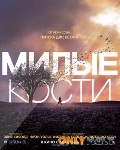 Poster Милые кости
