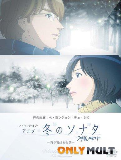 Poster Зимняя соната
