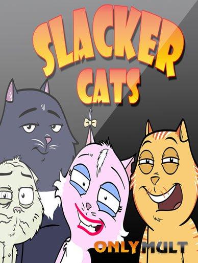 Poster Домашние коты