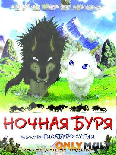 Poster Ночная буря