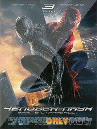 Poster Человек-паук 3
