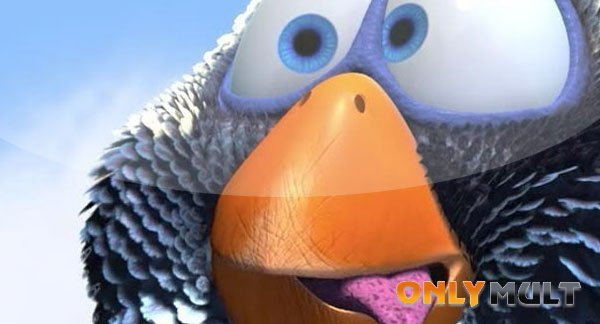 Первый скриншот О птичках