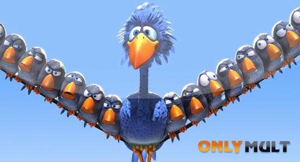 Второй скриншот О птичках