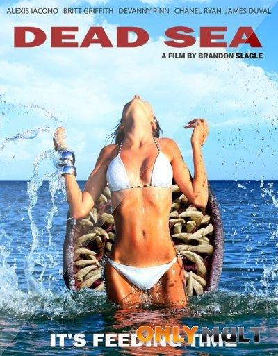 Poster Мертвое море