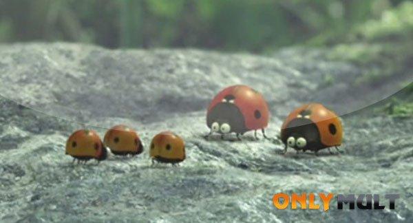 Первый скриншот Букашки: Приключение в Долине муравьев