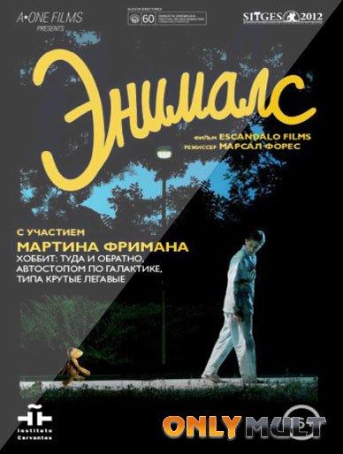 Poster Энималс