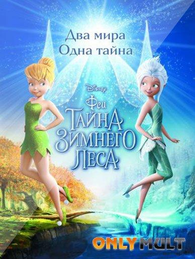 Poster Феи: Тайна зимнего леса