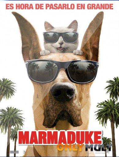 Poster Мармадюк