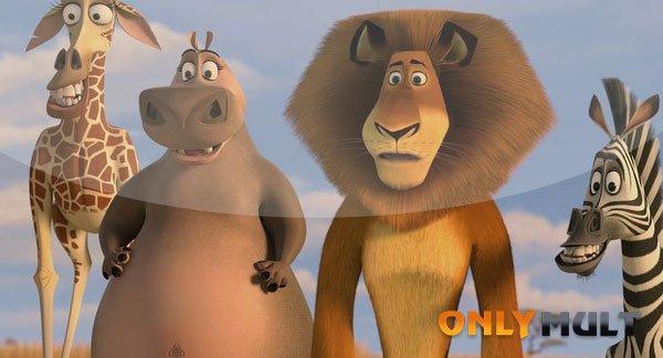 Первый скриншот Мадагаскар 2