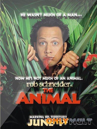Poster Животное
