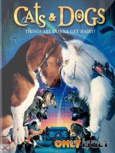 Poster Кошки против собак