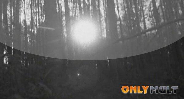Первый скриншот Ведьма из Блэр