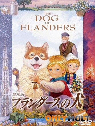 Poster Собачье сердце / Фландрийский пёс [аниме]