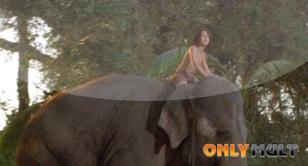 Второй скриншот Книга джунглей: История Маугли