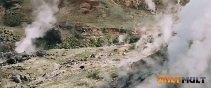 Первый скриншот Земля медведей
