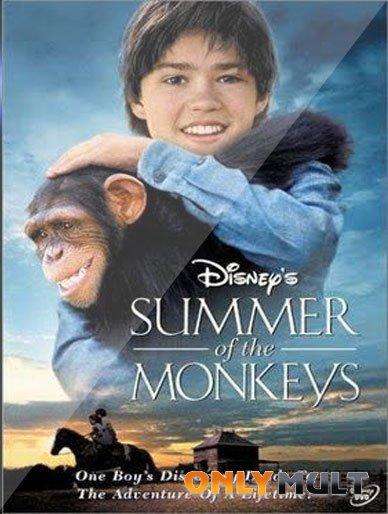 Poster Неприятности с обезьянками