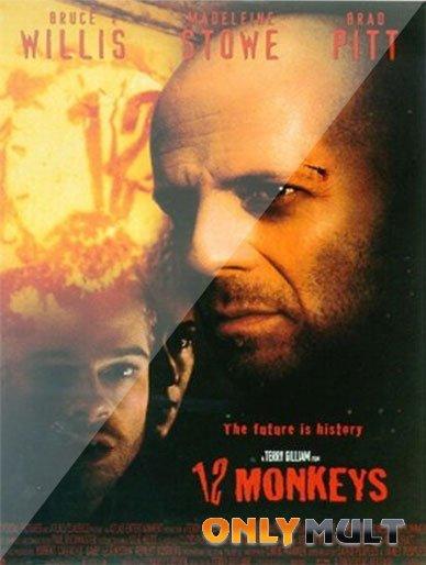 Poster 12 обезьян