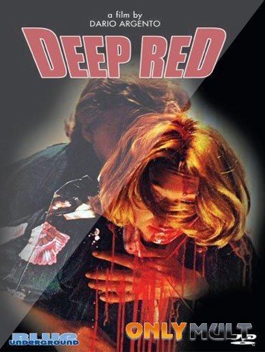 Poster Красные клетки